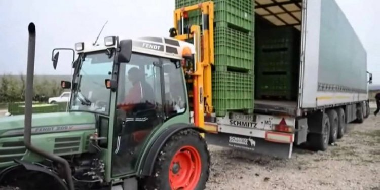 Tractor Rear Mounted Forklift