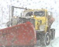 Snow Plow license